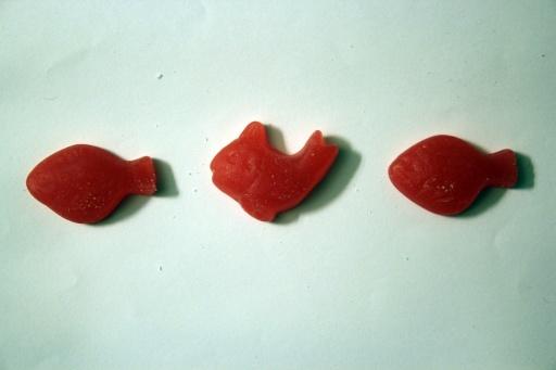 IMG_8302.jordbærfisk